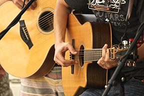 dianablack-dsswfest2014.GuitarsWEBSMALL